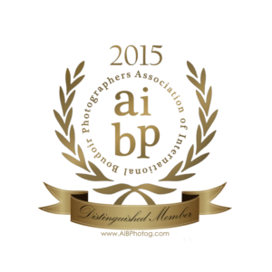 AIBP Distingquished Member Seal 2015